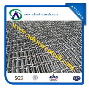 Factory Sales Square Crimped Wire Mesh Made in China pictures & photos