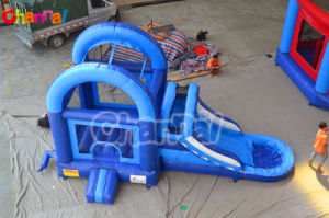 Inflatable Castle with Water Slide/Inflatable Water Combo Chb427 pictures & photos