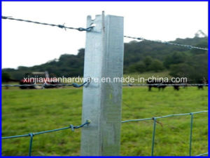 Y Post /Farm Fence Post with Hole pictures & photos
