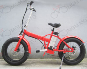20 Inch Folding Electric Bike with 500W Motor pictures & photos