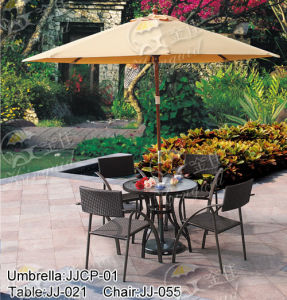 Outdoor Furniture, PE Rattan Furniture, (JJ-055C, JJ-021T) pictures & photos