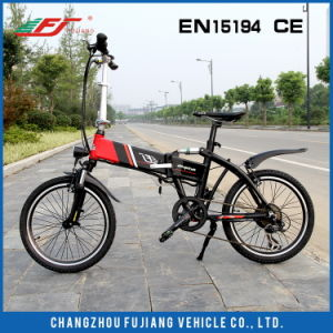 Fujiang Folding Electric Bike with Optional Accessoires pictures & photos