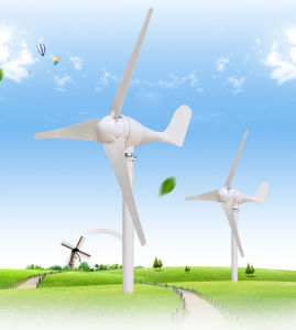Wind Power Generator/100W 200W 300W Wind Generator Plant pictures & photos