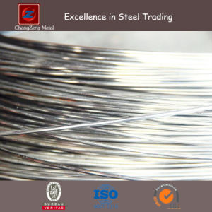 SUS304 316 301 Stainless Steel Wire Galvanized Iron Wire (CZ-W37) pictures & photos