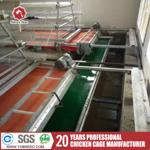 Chicken Cages for Poultry Farm for Nigeria pictures & photos
