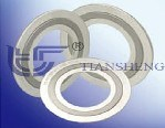 Spiral Wound Gasket (Nuclear) pictures & photos