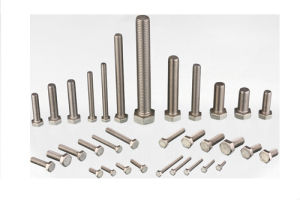 DIN933 Hexagon Head Screw pictures & photos