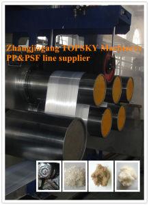 Hot Sale PSF Production Line
