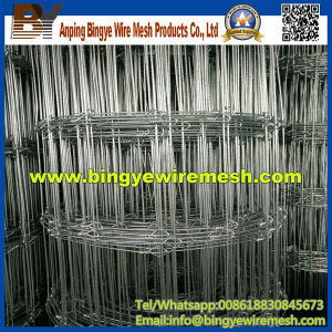 Hot Dipped Galvanized Grassland Fence Wire Mesh pictures & photos