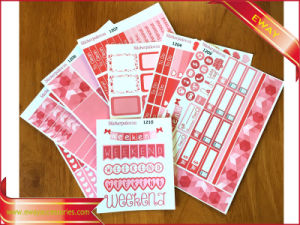 Printed Instruction Sticker Paper Sticker PVC Sticker pictures & photos