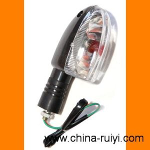 Motorcycle Turn Signal Lamp, Motorcycle Light for BAJAJ125 (RY-LM-01)