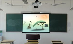 Magon Design Projection Screen (MSBH75)