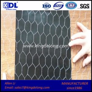 Chicken Wire Netting/ Poultry Farms Fence pictures & photos