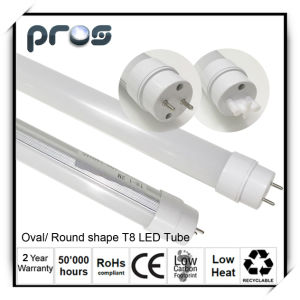 60cm Frosted Cover T8 LED Tube Light Office Lighting pictures & photos