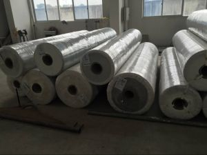 PU/PVC Conveyor Belt for Bread and Sport Equipment pictures & photos