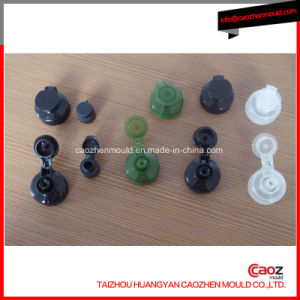 Plastic Injection Flap/Clamshell Cap Mould