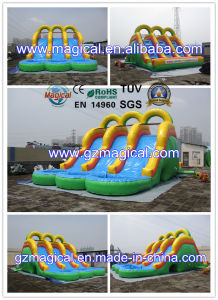 Commercial Kids Adult Inflatable Water Slide with Pool (MCA-101) pictures & photos
