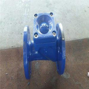 Dn15-Dn600 Flanged Ball Check Valve pictures & photos