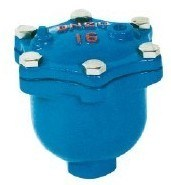 Ductile Iron with Epoxy Caoting Thread End Air Valve pictures & photos