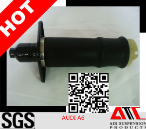 Auto Parts Rear Adjustable Shock Absorber for Benz A6 pictures & photos