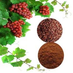 Anti-Oxidant Herb: Grape Seed Extract pictures & photos