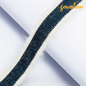 New Elastic Webbing for Garment Decoration pictures & photos
