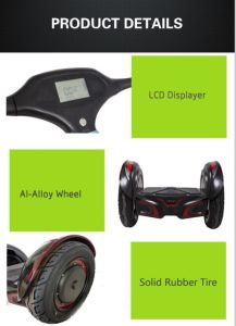 Electric Scooter/Balance Scooter/E-Bike/Self Balance Scooter/Two Wheel Scooter pictures & photos