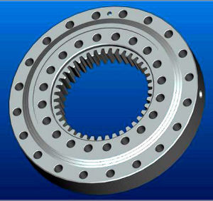 Rollix Slewing Ring Bearing Turntable Bearing External Gear 31 0841 01 pictures & photos