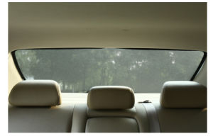 Magnetic Car Window Sunshade pictures & photos