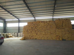 Corn Gluten with Competitive Price for Poultry pictures & photos