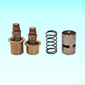 Hot Sale and Cheap Air Compressor Parts Thermostatic Valve pictures & photos