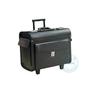 Supervision Sampling Case (VSR-10) pictures & photos