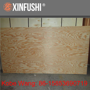 Decorative Larch Plywood pictures & photos