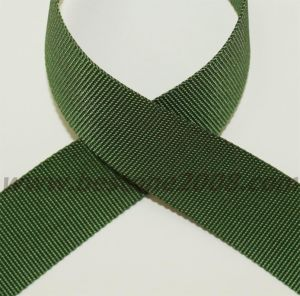 High Quality Nylon Webbing Strap#1501-03A pictures & photos