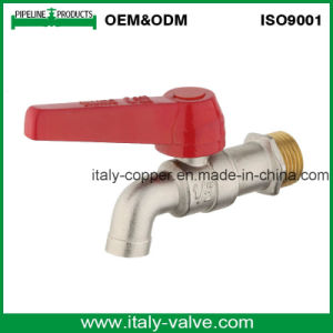 ISO9001 Certified Brass Forged Nickel Plated Bibcock Without Outlet (AV2045) pictures & photos