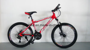 Bike: 24 Challenger Mountain Bike, with Shimano 21s, Disc-Brake pictures & photos