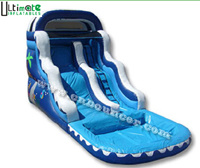 Ocean Wave Inflatable Water Slide (W001)