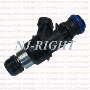 Delphi Fuel Injector/ Injector/ Fuel Nozzel 17124531/FJ316 for Gmc; Chevrolet pictures & photos