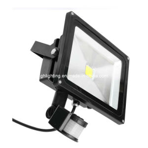 30W High Power PIR LED Floodlight (GH-TG-08) pictures & photos