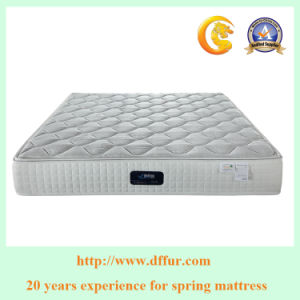 Mattress Bed and Super Good King Size Bonnell Spring Mattress pictures & photos