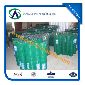 1′′x14ga. PVC Welded Wire Mesh pictures & photos