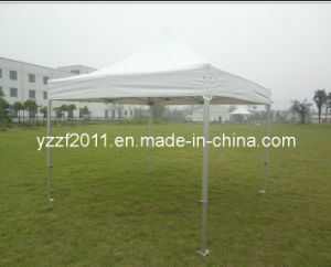 Folding Tent pictures & photos