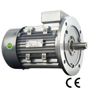YD Electrode-Varied Multi-Speed Motor (2/4/6/8/12 poles, 0.35~82KW) pictures & photos