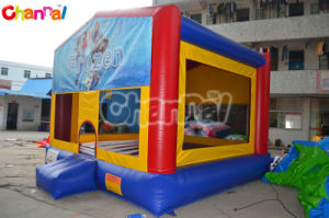 Frozen Inflatable Bouncer/Inflatable Modular Bouncer Chb113 pictures & photos