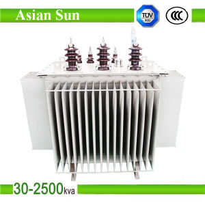 315kVA 50Hz Copper Winding Oil Immersed Transformer (33KV) pictures & photos