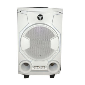 Hot Selling 8 Inch PA Speaker with Wireless Microphone pictures & photos