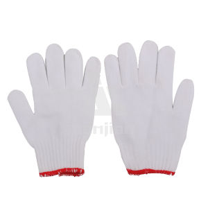 Cotton Glove (SJIE10006) , Industrial Glove pictures & photos