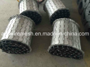 Plate Belt for Metal Treatment and Food Processing pictures & photos