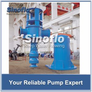 Long Axis Overhung Vertical Turbine Spindle Trash Pump pictures & photos