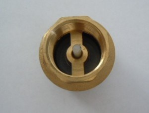 Brass Filter Valve with Plastic Core or Brass Core pictures & photos